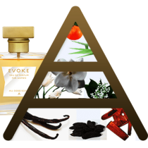 evoke all good scents perfume review